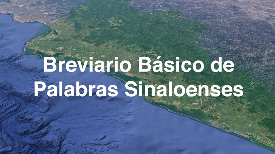 Palabras Sinaloenses Entiende Como Se Habla En Sinaloa